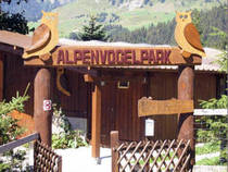 Alpenvogelpark  © Alpenvogelpark